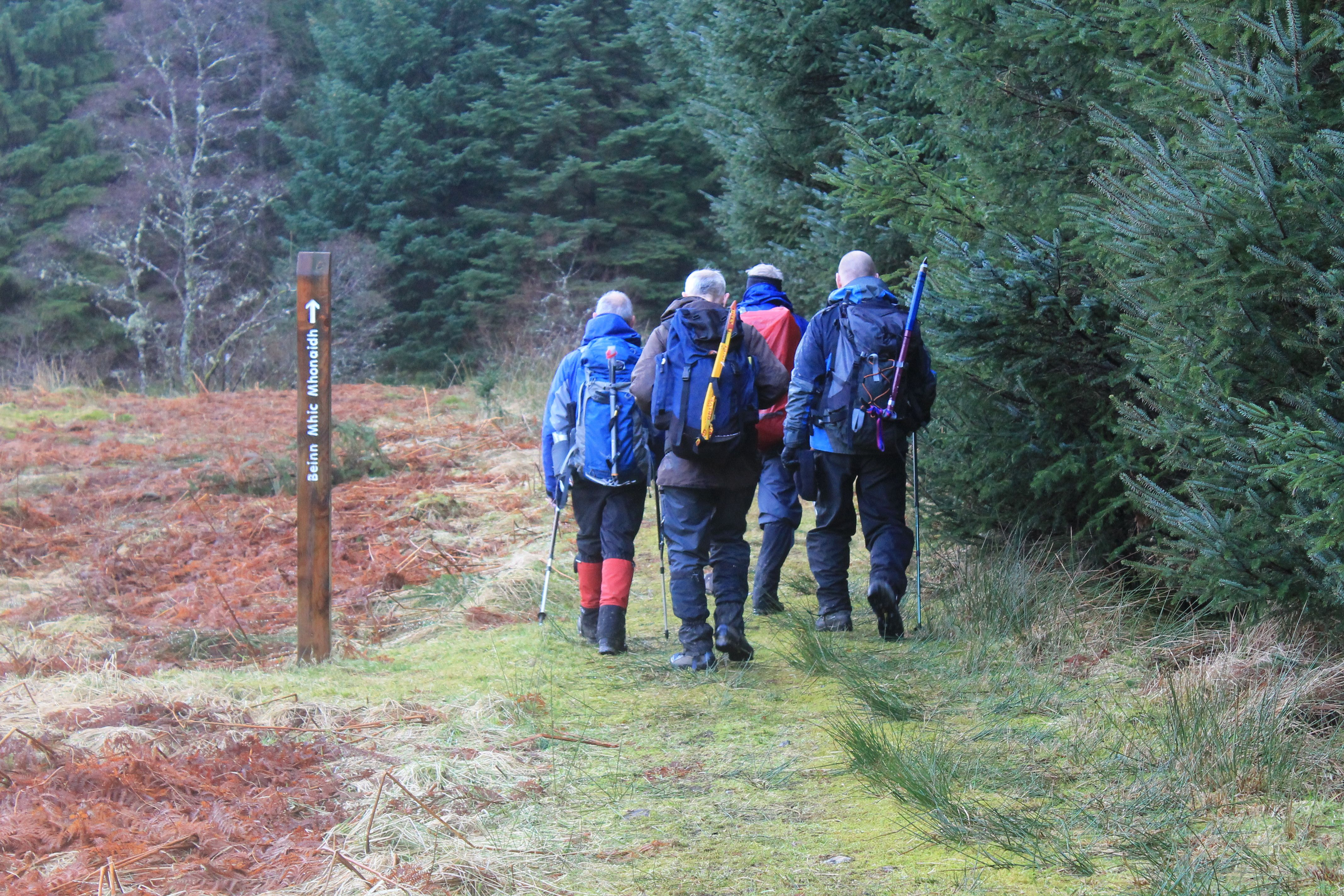 Heading through the Caledonian Forest Reserve